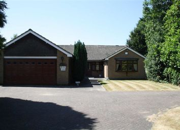 Thumbnail 4 bed detached bungalow for sale in Cedar Close, Glenfield, Leicester