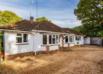 Thumbnail 5 bed detached bungalow for sale in Melbury Cottage, Smithwood Avenue, Cranleigh