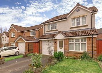 Thumbnail 4 bed detached house for sale in Highlander Way, Tullibody, Alloa
