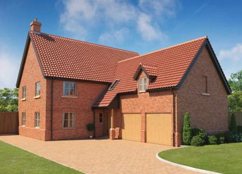Thumbnail 5 bedroom detached house for sale in Lower Street, Salhouse, Norwich