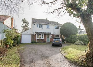 Thumbnail 5 bed detached house for sale in Crocklands, Greenstead Green, Halstead