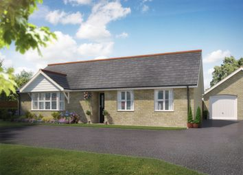 Thumbnail 3 bed detached bungalow for sale in Dunnetts Close, Ashill, Thetford