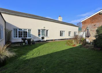 Thumbnail 3 bed cottage for sale in High Road, Trimley St. Martin, Felixstowe