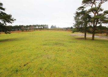 Thumbnail 2 bed property for sale in Hurn Road, Christchurch, Dorset
