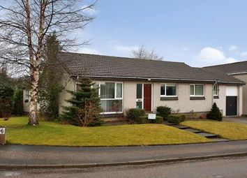 Thumbnail 4 bed bungalow to rent in Grant Road, Banchory