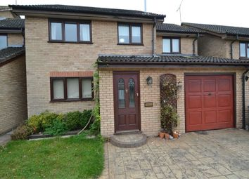 Thumbnail 4 bed detached house to rent in Hardy Close, Brantham, Manningtree