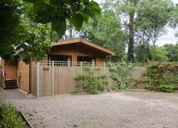 Thumbnail 2 bed detached bungalow to rent in Laleham Reach, Chertsey