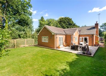 Thumbnail 4 bed detached bungalow for sale in Ashurst Drive, Tadworth, Surrey