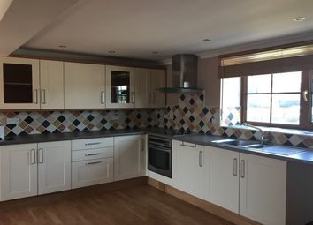 Thumbnail 3 bed barn conversion to rent in Llanwnnen, Lampeter