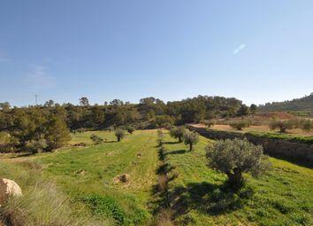 Thumbnail Land for sale in 30529 La Zarza, Murcia, Spain