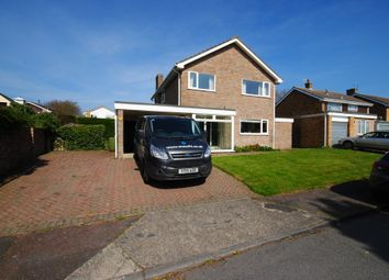 Thumbnail 4 bedroom detached house for sale in Hall Hills, Roydon, Diss