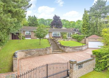 Thumbnail 4 bed bungalow for sale in Stonehouse Road, Halstead, Sevenoaks, Kent