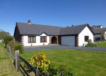 Thumbnail 3 bed bungalow for sale in Bryn Eglur, Llanfarian, Aberystwyth