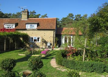 Thumbnail Semi-detached house for sale in Crooked Chimney Row, West Stow, Bury St. Edmunds