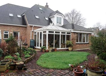 Thumbnail 4 bed detached house for sale in Gewans Meadow, St. Austell, Cornwall