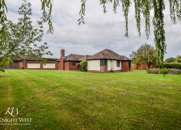 4 bed detached bungalow for sale in Great Tey Road, Colchester, Essex CO6