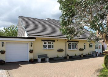 Thumbnail 3 bed detached bungalow for sale in Salters Lane, Tamworth