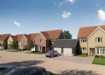 Thumbnail 4 bed link-detached house for sale in Little Canfield, Essex