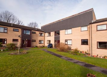 Thumbnail 2 bed flat to rent in Cobnar Road, Norton, Sheffield