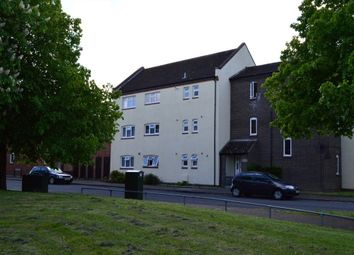 Thumbnail 2 bedroom flat to rent in Notridge Road, Norwich