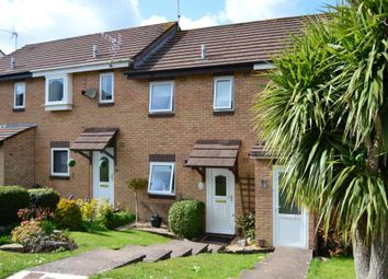 Thumbnail 2 bed property to rent in Mellons Close, Newton Abbot, Devon