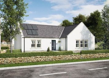 Thumbnail 3 bed bungalow for sale in Station Road, Kingsbarns, St. Andrews