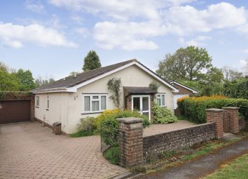 Thumbnail 3 bed detached bungalow to rent in Springwell Road, Beare Green, Dorking