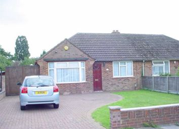 Thumbnail 3 bed semi-detached bungalow for sale in Hollybush Avenue, St Albans, Hertfordshire
