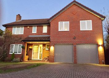 Thumbnail 5 bedroom detached house for sale in Horsnape Gardens, Binfield