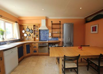 Thumbnail 4 bed semi-detached house for sale in Birchwood Close, Totnes, Devon