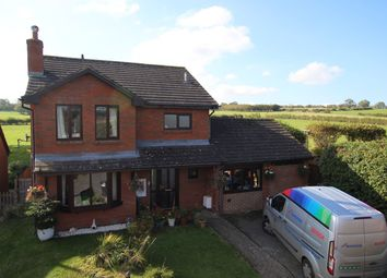 Thumbnail 4 bed detached house for sale in Meadow View, Llanfihangel Talyllyn, Brecon
