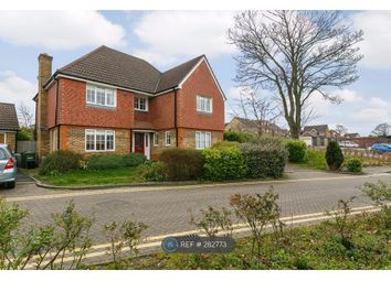 Thumbnail 4 bed detached house to rent in Trenear Close, Orpington
