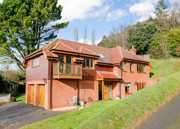 Thumbnail 4 bed detached house for sale in Little Johns Cross Hill, Exeter