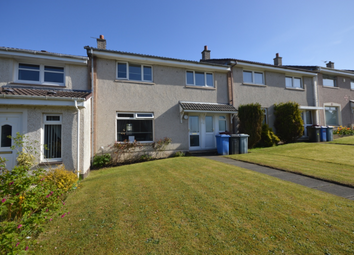 Thumbnail 3 bed terraced house to rent in Sydney Place East Kilbride, East Kilbride