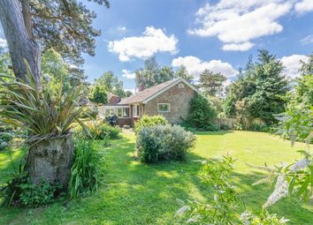 Thumbnail 3 bedroom detached bungalow for sale in Grove Road, Wells-Next-The-Sea