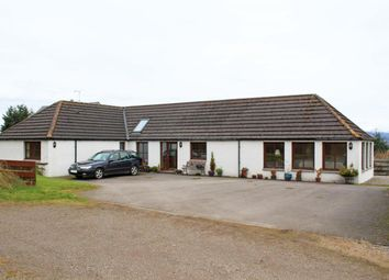 Thumbnail 3 bed bungalow to rent in Culbo Farm Cottage, Culbo Road, Culbokie