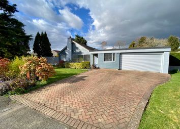 4 bed detached bungalow for sale in Matching Green, Matching, Essex CM17