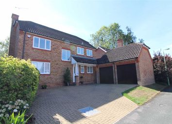 Thumbnail 4 bed detached house for sale in Collinsons, Ipswich