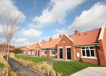 Thumbnail 1 bed bungalow for sale in Ernest Luff Court, Luff Way, Walton-On-The-Naze
