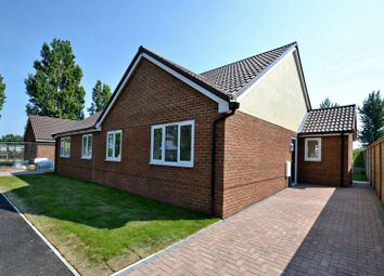 Thumbnail 2 bed bungalow for sale in Shellness Road, Leysdown-On-Sea, Sheerness