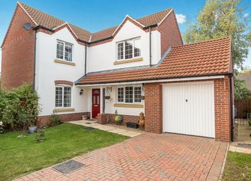 Thumbnail 4 bed detached house to rent in Nursery Way, Spalding