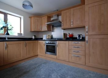 Thumbnail 4 bedroom detached house to rent in Storth Lane, Broadmeadows, South Normanton, Alfreton