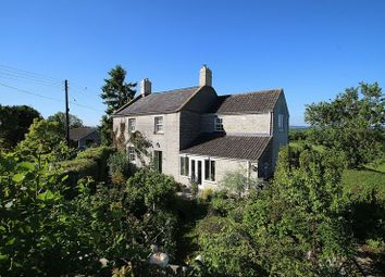 Thumbnail 4 bed detached house for sale in Barton St. David, Somerton