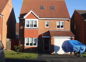 Thumbnail 5 bed detached house to rent in Bluebell Way, Hartlepool
