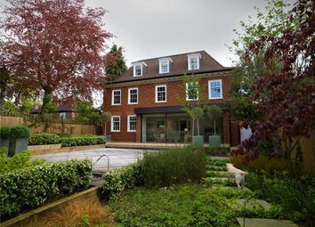 Thumbnail 7 bed detached house for sale in Somerset Road, Wimbledon