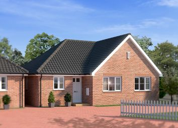 Thumbnail 3 bed detached bungalow for sale in The Street, Alburgh
