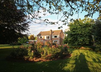 Thumbnail 5 bedroom detached house for sale in North Street, Winterton, Scunthorpe