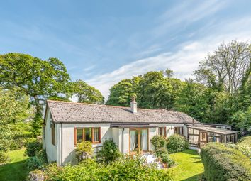 Thumbnail 5 bed detached bungalow for sale in Curtisknowle, Totnes