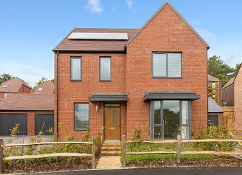 Thumbnail 4 bed semi-detached house to rent in Browning Place, Cane Hill Park, Coulsdon