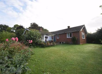 Thumbnail 4 bedroom detached bungalow to rent in Putley, Ledbury, Herefordshire